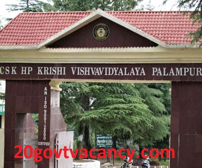CSKHPKV Palampur Recruitment 2021 Apply For Junior Research Fellow Posts Vacancies