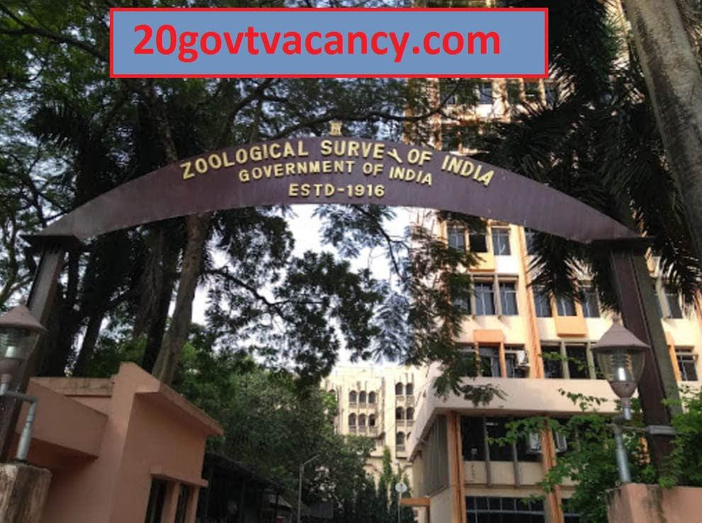 ZSI Kolkata Recruitment 2021 Jobs In Zoological Survey of India