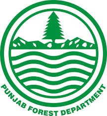 Punjab Forest Guard Recruitment 2021 Apply for Forest Guard Posts Vacancies