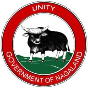 DYRS Nagaland Recruitment 2021 Jobs In Department of Youth Resource and Sports