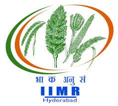 IIMR Hyderabad Recruitment 2021 Jobs In Indian Institute of Millets Research