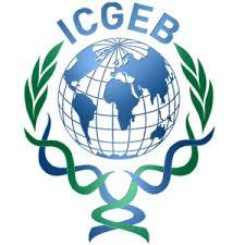 ICGEB Delhi Recruitment 2021 Jobs In International Centre for Genetic Engineering & Biotechnology